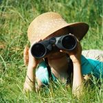 For Viewing Wildlife: Get The Best Binoculars For Amazing Experience!