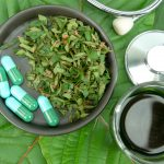 Kratom The Newest Health Alternative – Learn about it